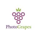 照片的葡萄Logo