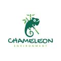 Chameleon Environment  logo