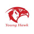 年輕的鷹Logo