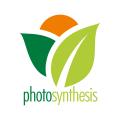 光合作用Logo