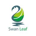 天鵝葉Logo