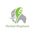 中草藥的大象Logo