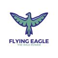 飛鷹Logo