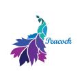 羽毛Logo
