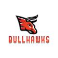 bullhawksLogo
